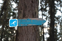 Self-portrait? (rozoneill) Tags: maiden peak trail waldo lake pacific crest oregon hiking willamette pass gold skyline odell butte volcano forest eugene