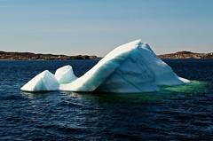 Iceberg #3 (le Brooklands) Tags: blanc bleu blue d7000 glace grenn ice iceberg newfoundlandlabrador sigma2470mm twilingateharbor vert white