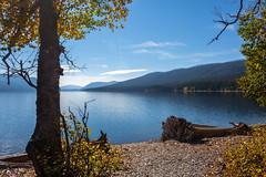 Pure nature (JoLoLog) Tags: trees usa lake mountains montana mt joe rockymountains glaciernationalpark gnp lakemcdonald platinumheartaward canonxsi