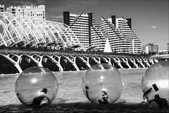 what is life but a bubble ... (lunaryuna) Tags: bw valencia pool blackwhite spain bubbles monochromatic lunaryuna modernarchitecture kidsgame cataluna umbracle ciudaddelasartesyciencias urbanconstructs cityofartsandculture homourbe artificiallale