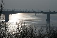 The bridge (andrey.senov) Tags: russia kostroma province volga river water ice bridge trees          fujifilm fuji xa1 fujifilmxa1 morning sun light reflection      35faves
