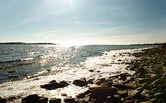 Icy Shores (Georgie_grrl) Tags: toronto ontario cold ice frozen shore pentaxk1000 icy lakeontario brrrrrrrr eeeek rikenon12828mm twoweeksuntilpolarbeardiptime