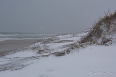 coquina 7025 (cjnewlife12) Tags: snow beach landscape dunes outerbanks coquinabeach snowdunes snowobx