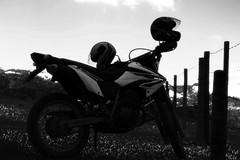 passion o' mine (Rodrigo Alceu Dispor) Tags: bw mine passion motoca