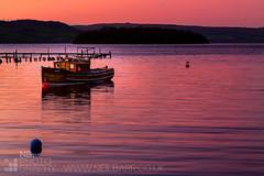 Sunrise over Balmaha Bay (GenerationX) Tags: longexposure pink red sky water sunrise reflections dawn islands bay scotland pier boat nationalpark fishing waves purple unitedkingdom jetty scottish neil ripples loch lomond buoys trossachs bouys barr balmaha