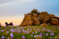 Flores y Deauville (DOCESMAN) Tags: flowers sunset flores bike honda atardecer dani moto motorcycle motor doces deauville motorrad motorcykel moottoripyörä motocykel motorkerékpár nt700v docesman mototsikl