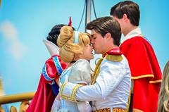 Dream Along with Mickey (EverythingDisney) Tags: disney disneyworld cinderella wdw waltdisneyworld magickingdom princecharming castleparty dawm dreamalongwithmickey princesscinderella