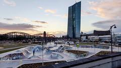 Last man standing (JohannFFM) Tags: frankfurt abendstimmung ezb osthafen skaterpark