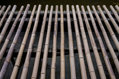 Bamboo roof (@pigstagram) Tags: bamboo