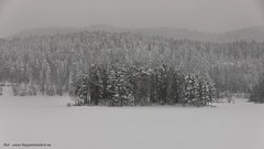 20150122069909 (koppomcolors) Tags: winter snow vinter sweden sverige scandinavia snö värmland varmland koppom skillingmark koppomcolors