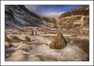 8219  Walking the Dogs  at Mahon Falls  Co Waterford 13th January 2015