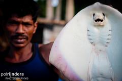 CRW_1907 (polrijnders) Tags: strand zee visser tsunami srilanka unawatuna rog kust onderkant vangst