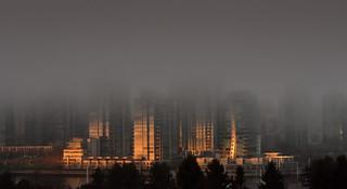 January 30th, foggy False Creek