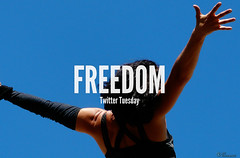 #TwitterTuesday: Freedom (Flickr) Tags: freedom twittertuesday