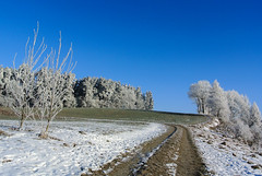 What a beautiful winter morning ... ~ Explore (Kat-i) Tags: blue trees winter sky nature forest bayern deutschland frost path hoarfrost natur himmel blau kati wald bäume raureif weg 2015 furth nikon1v1