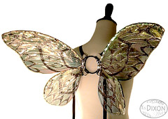 Calliope No.5 (RSDixonArt) Tags: halloween glitter costume wings handmade small fairy fantasy cellophane fairywings rsdixonart