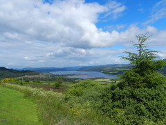 Kyle of Sutherland from Struie Hill, July 2016, Explored (allanmaciver) Tags: kyle sutherland bonar bridge ardgay water tree viewpoint height green weather warm sunny allanmaciver