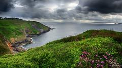 Kergadiou (DENISDROUAULT) Tags: ocean sea sky mer france nature rock fleurs french brittany bretagne breizh ciel paysages hdr rocher wildcoast erdeven eascape canon5dmiii denisdrouault bruyeres