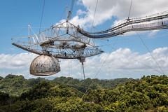 Radiotlescope - Arecibo - [Puerto Rico] (Old Jhack) Tags: puertorico arecibo caribbean contact 007 goldeneye carabes portorico sefti sigma1750mmf28 radiotlescope