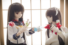 P8080562 () Tags: doll dollfiedream dds omd em5mark