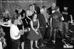 2016 Bosuil-Het publiek bij de 30th Anniversary Steady State 34-ZW