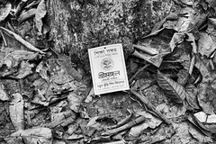Down the Memory Lane (Russell John) Tags: bw monochrome leaves id card lawachara sreema russelljohn srimangal kamalganj maulvibazar bangladesh