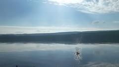 P1000432 (one shot gio) Tags: cascate falls scozia scotland water fall