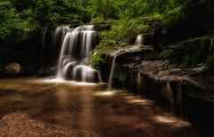 Hunts Creek Sydney (tonyg1494) Tags: photographysydney sydney sydneyphotography huntscreeksydney huntcreek huntscreek australia trees green photography waterfall river creek water nikon18300mm nikond5300