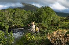 Flyfishing in Ireland (jerseyno12002) Tags: ireland flyfishing dinglepeninsula flyfishinginireland