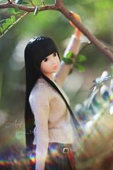 Citrus Makoto (uve_triple) Tags: makoto momoko momokodoll doll sekiguchi petworks tartansyndrome citrus fresh 16scale