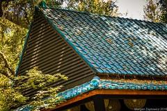 Tea House Roof (Margan Zajdowicz) Tags: roof building architecture outdoor japanese teahouse descansogardens texture blue asian japanesegarden tile digital zajdowicz availablelight california lacanadaflintridge