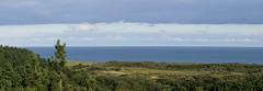 Forest and sea (Wouter de Bruijn) Tags: fujifilm xt1 fujinonxf90mmf2rlmwr panorama pano landscape nature forest sea tree trees pine pineforest dunes clouds sky northsea oranjezon walcheren outdoor