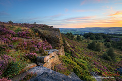 Norland Sunset (chrissmithphotos1) Tags: flora weather bloom blue calderdale color colorful countryside dramatic dusk england europe evening field flower halifax heather landmark landscape light nature nobody norland outdoors pennines photography plant purple rural scenery scenic september sky summer sun sunlight sunset traditional travel uk west wildflowers yellow yorkshire