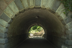"""Inscope Arch"" Central Park Manhattan (nrhodesphotos(the_eye_of_the_moment)) Tags: dsc04001160 theeyeofthemoment21gmailcom wwwflickrcomphotostheeyeofthemoment inscopearch centralpark manhattan stone nyc steps underpass vintage passageway arch perspective geometric creative plantlife shadows vault summertime season lightfixtures urban"
