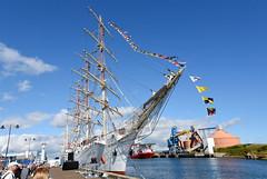 BSC_1266a  Blyth Tall Ships Dar Mlodziezy (DavidWF2009) Tags: blyth northumberland tallship sailingship harbour darmlodziezy