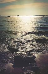 T O N E S (Deganizer) Tags: degan marina basin lake erie buffalo buffalonewyork