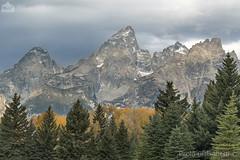 Montagne, mountains (paolo.gislimberti) Tags: parchinazionali nationalparks grandteton paesaggiodimontagna mountainlandscape alberi trees conifere conifers