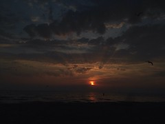 Golden (alexwinger) Tags: sea beach sunset sky evening orange yellow golden usualshoot iphone clear cloud cloudy