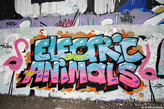 Electric animals (Red Cathedral is offroad + off-grid in les Pyrn) Tags: sonyalpha a77markii a77 mkii alpha sony sonyslta77ii slt evf translucentmirrortechnology redcathedral graffiti streetart urbanart contemporaryart urbex belgium alittlebitofcommonsenseisagoodthing ruisbroek anderlecht brussels bruxelles tresspassing trespass pink flamingo