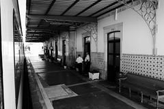 PORTUGAL, Vallée Du Douro, Gare de Pocinho (Bruno Cochet) Tags: railway train gare noiretblancmonochrome streetphotography cp douro valley vallée du vale do