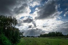 Devil's Dyke Walk-31 (adambowie) Tags: devilsdyke cambridgeshire newmarket