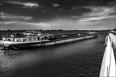 L'ocan sur le fleuve (vedebe) Tags: bateaux fleuve mer ocean transportsmaritimes noiretblanc netb nb bw monochrome port ports marins marine transportmaritime