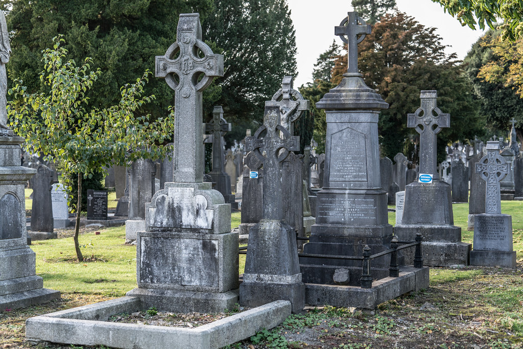 A QUICK VISIT TO GLASNEVIN CEMETERY[SONY F2.8 70-200 GM LENS]-122086