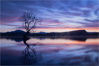 wanaka lake (3)