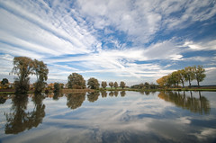Reflection (Felix Ott) Tags: pond reflection symetry trees sky clouds weiher lake spiegelung symmetrie bume himmel wolken