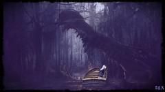 Woods of eternity (alexandra wardark) Tags: subtlefogvoguecolordefaultcolors forest woods secondlife sl darkness fog coffeetime wewanttobefree saariysqualitypictures