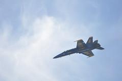 fleet week (vegaway) Tags: sanfrancisco usa airplane navy airshow blueangels vega usnavy fleetweek vegaway