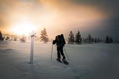 tunturi... (Hille Thomasson) Tags: snow trekking suomi finland snowshoe finnland hiking lappland arctic lapland arktis pallasyllstunturi