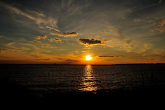 Long Island Sound ....... (l_dewitt) Tags: sunset longislandsound southeastern newlondoncounty wildlifephotos southernnewengland southeasternconnecticut sunsetimages