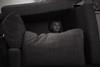 The fort (Dalla*) Tags: boy portrait tv kid child telly fork sofa wwwdallais